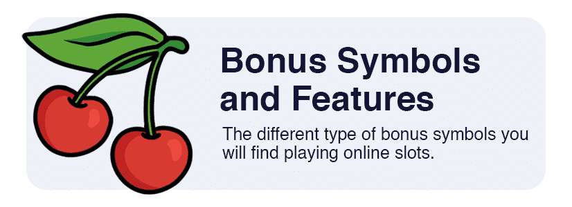 bonus symbols and features
