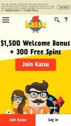 Kassu mobile screenshot