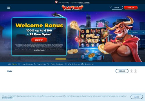PlayToro desktop screenshot